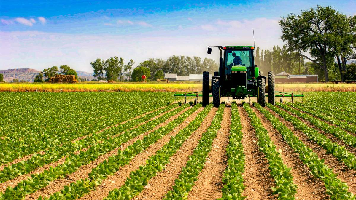 Intalnirea pe site Agricultura